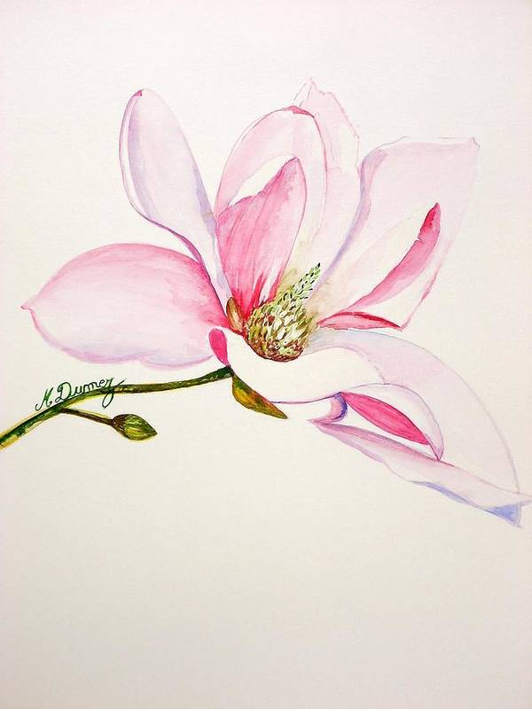 Flower Art Print featuring the painting Magnolia by Murielle Hebert