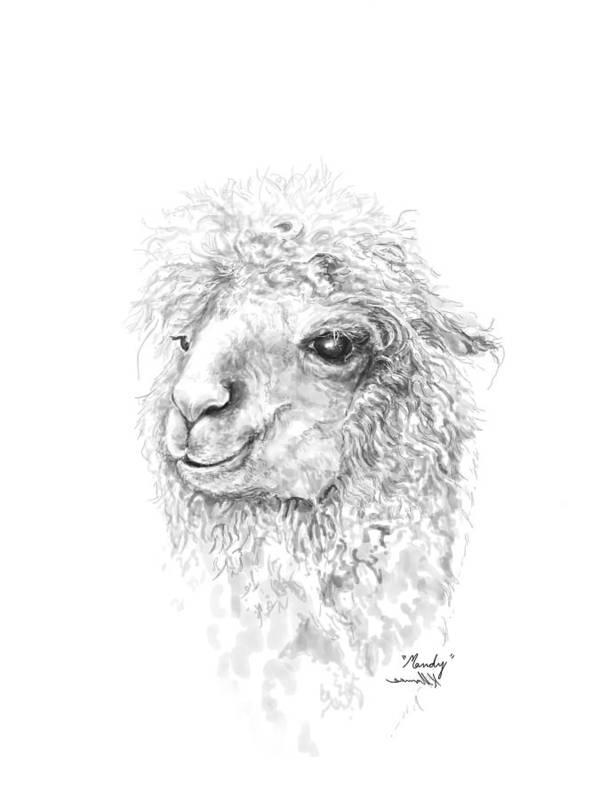 Llama Art Art Print featuring the drawing Mandy by K Llamas