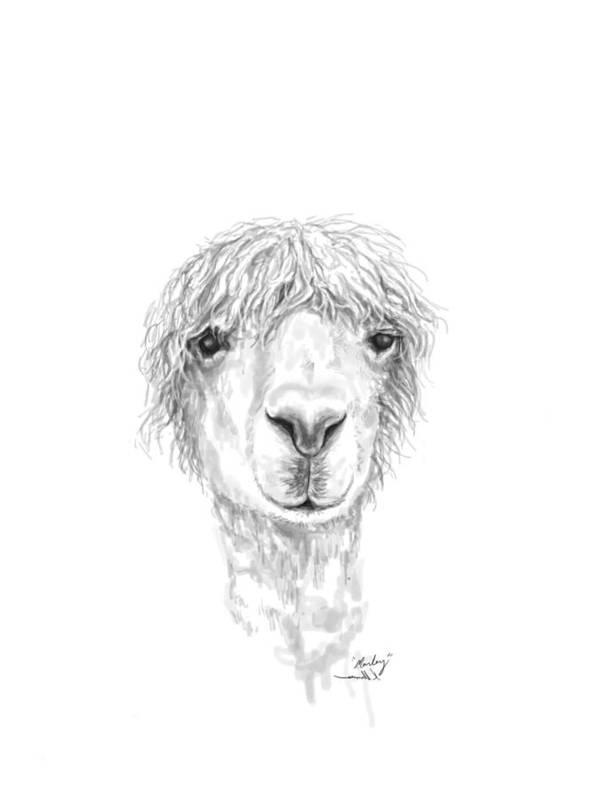 Llama Art Art Print featuring the drawing Marley by K Llamas