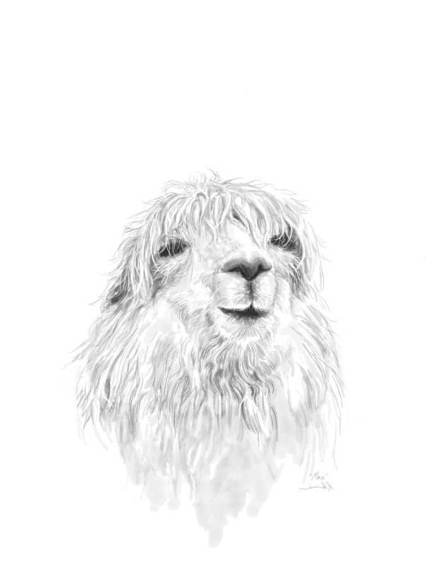 Llama Art Art Print featuring the drawing Max by K Llamas