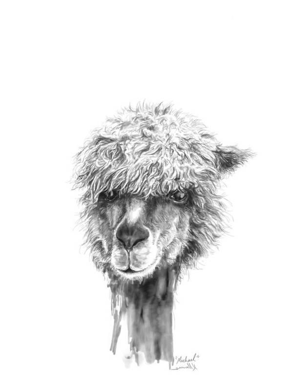 Llama Art Art Print featuring the drawing Michael by K Llamas