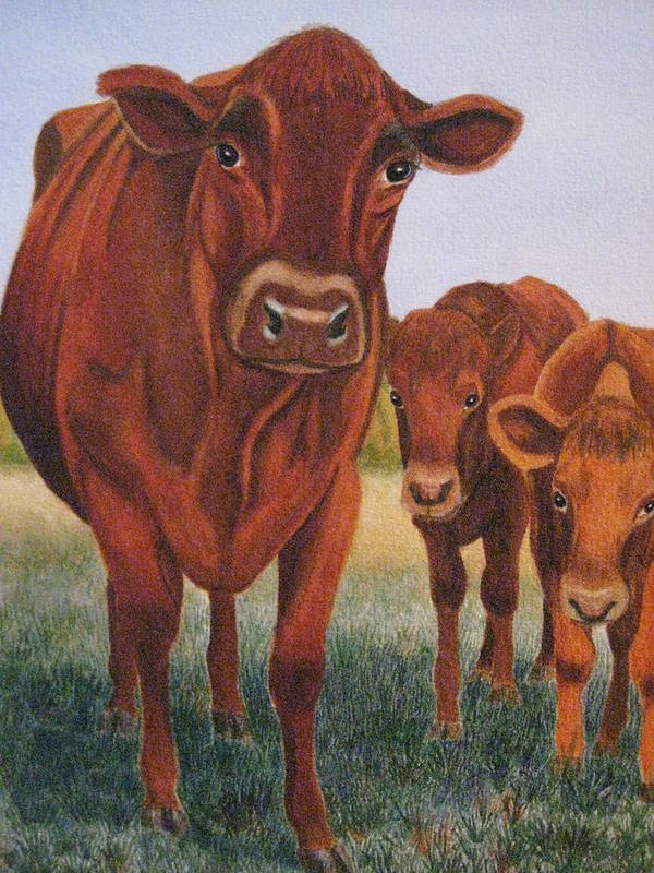 Cows Art Print featuring the painting Mom And The Kids by Barbara Pascal