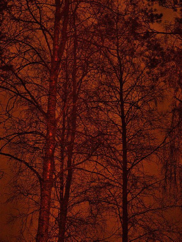 Lehtokukka Art Print featuring the photograph Moonshine 11 Red Sky by Jouko Lehto