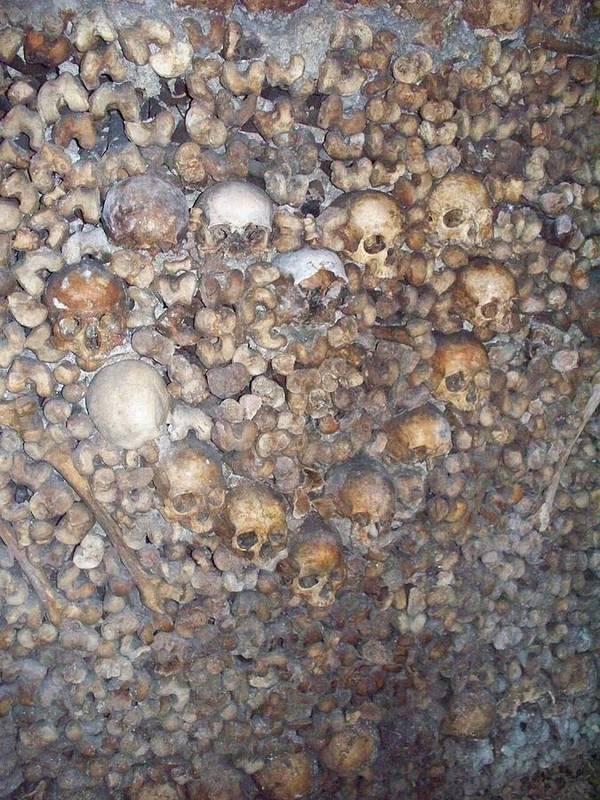 Skull Art Print featuring the photograph Morbid Heart by Jason Galles