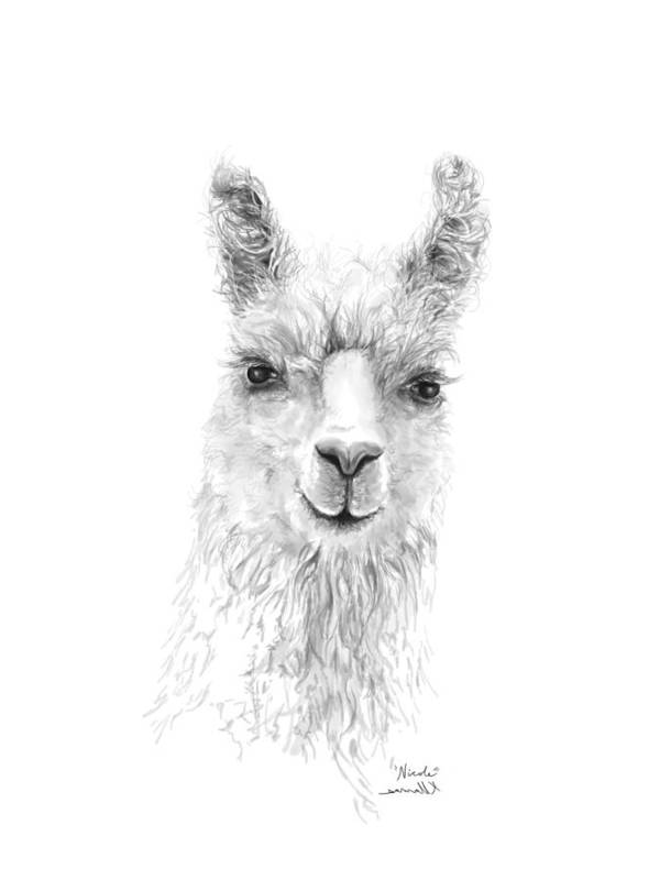 Llama Art Art Print featuring the drawing Nicole by K Llamas