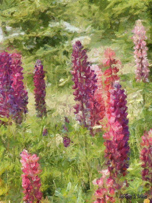 Nova Scotia Art Print featuring the painting Nova Scotia Lupine Flowers by Jeffrey Kolker