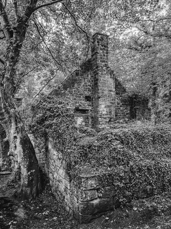 Landscapes Art Print featuring the photograph Old Mill by Nick Bywater