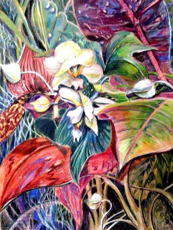 Valentines Art Print featuring the drawing Orchids In White by Mindy Newman