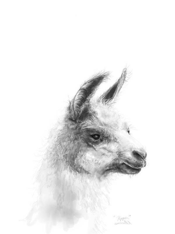 Llama Art Art Print featuring the drawing Pepper by K Llamas