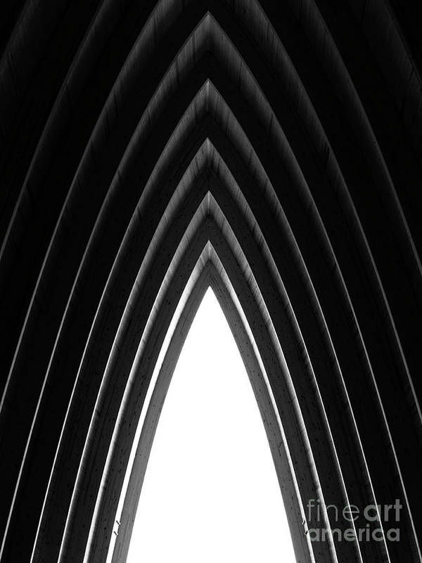 Architecture Art Print featuring the photograph Pine by Tapio Koivula