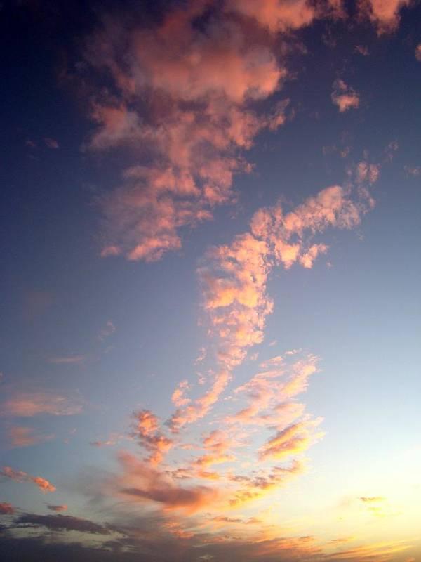 Pink Art Print featuring the photograph Pink Sunset One by Ana Villaronga