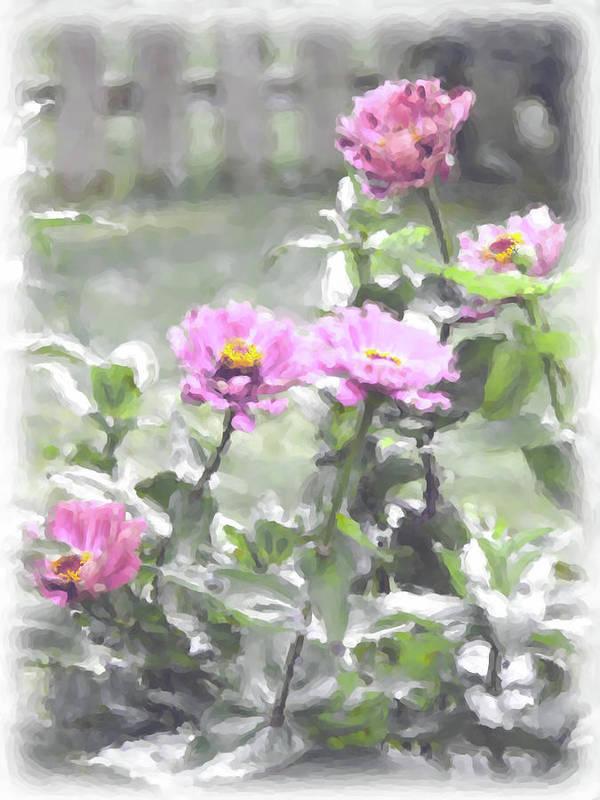 Zinnias Art Print featuring the digital art Pink Zinnias by Susan Lipschutz