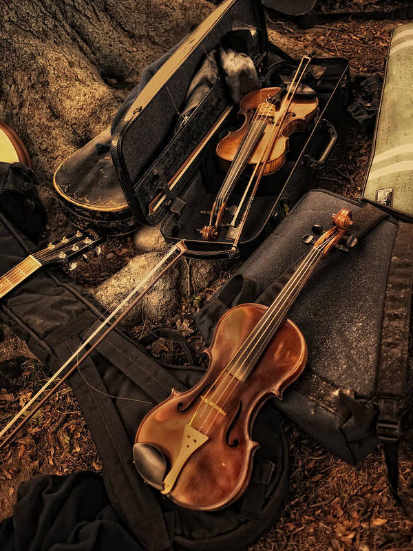 Violin Art Print featuring the photograph Possibilities by Robin-Lee Vieira