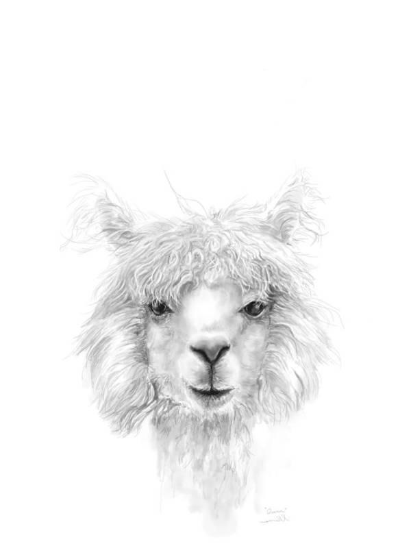 Llama Art Art Print featuring the drawing Quinn by K Llamas
