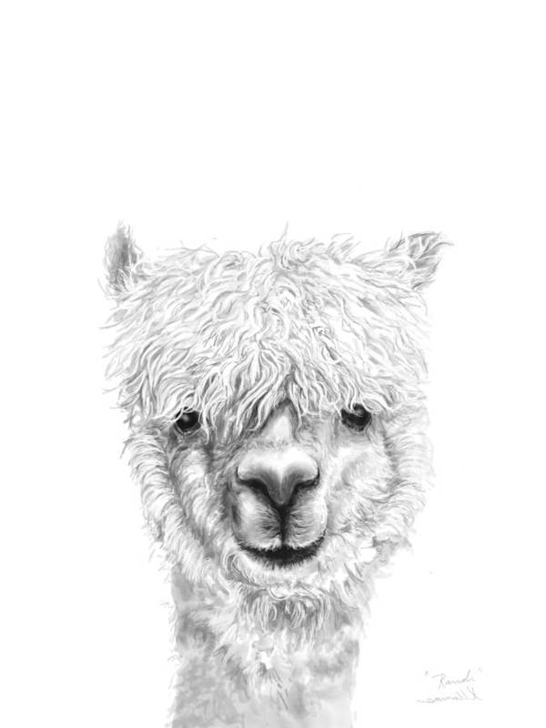 Llama Art Art Print featuring the drawing Randi by K Llamas