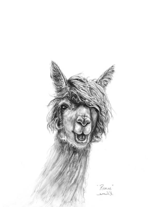 Llama Art Art Print featuring the drawing Renee by K Llamas