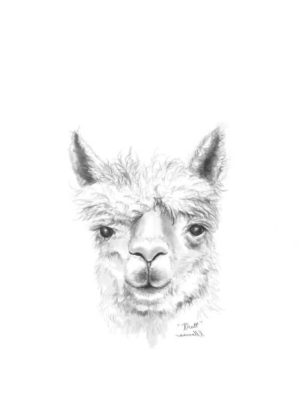 Llama Art Art Print featuring the drawing Rhett by K Llamas