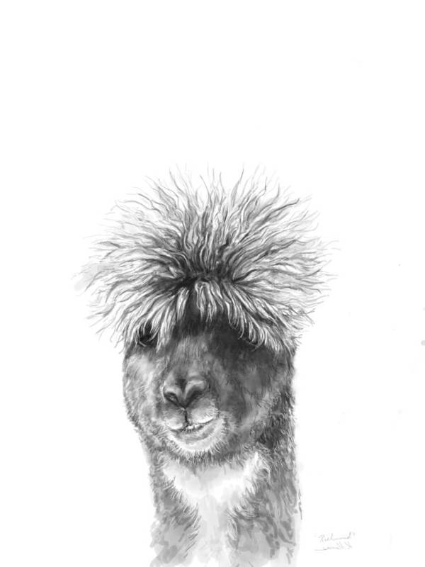 Llama Art Art Print featuring the drawing Richmond by K Llamas