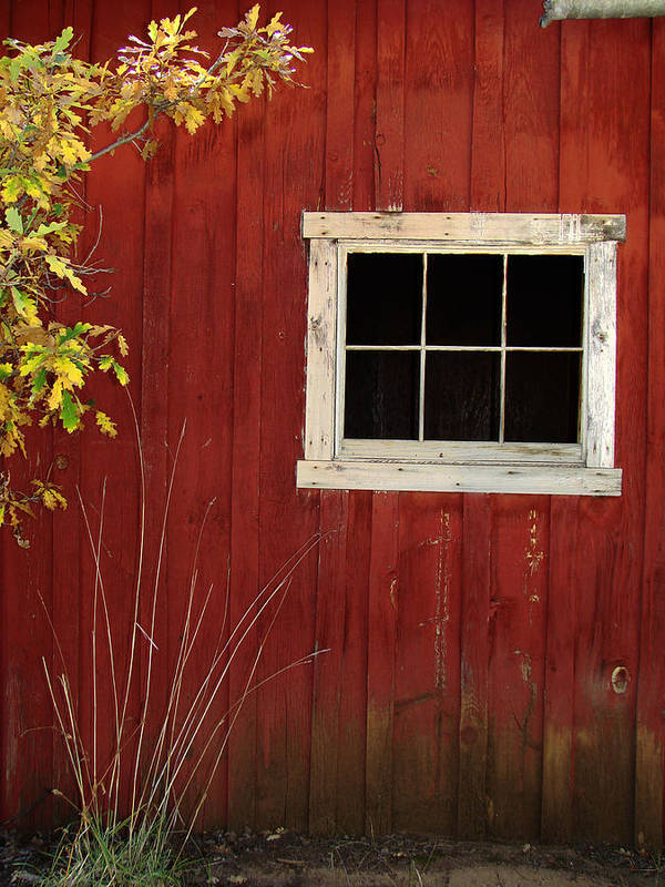 Barn Art Print featuring the photograph Rustic Redwood Barn by Brenda Purvis