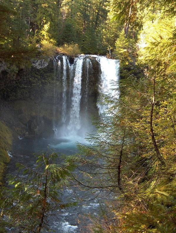 Waterfall Bend Oregon Sahalie Falls Mckenzie River Art Print featuring the photograph Sahalie Falls by Janet Hall