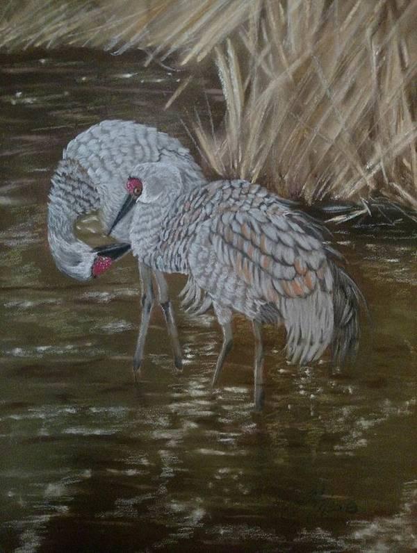 Sandhill Crane Art Print featuring the pastel Sandhill Crane Couple by Joan Mansson