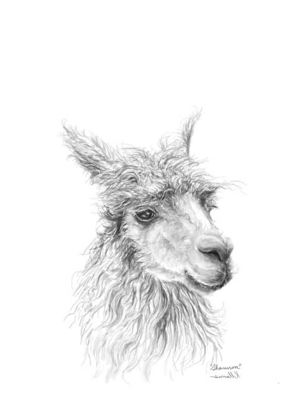 Llama Art Art Print featuring the drawing Shannon by K Llamas