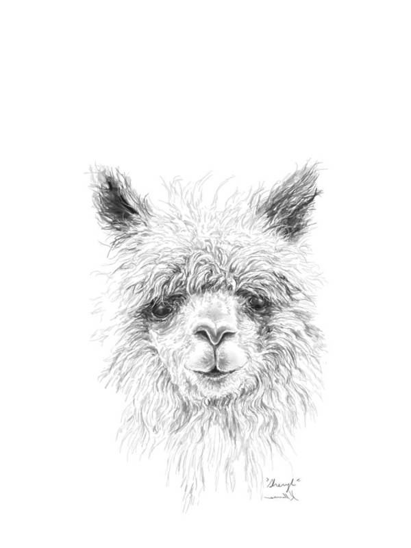 Llama Art Art Print featuring the drawing Sheryl by K Llamas