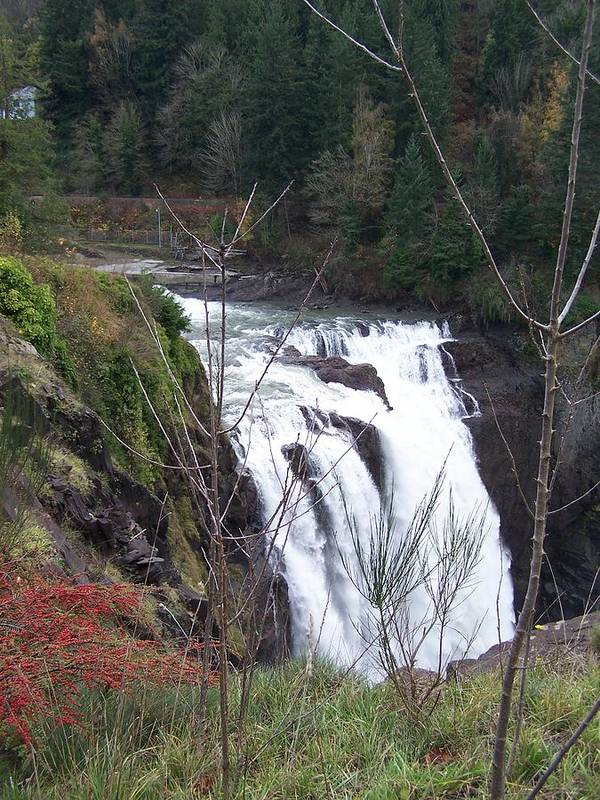 Waterfall Art Print featuring the photograph Snoqualmie Falls by Gene Ritchhart