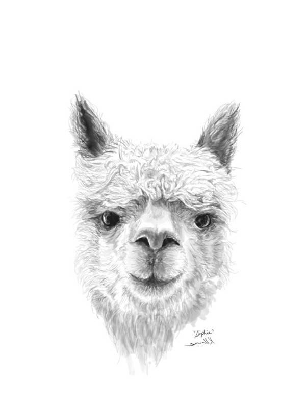 Llama Art Art Print featuring the drawing Sophia by K Llamas