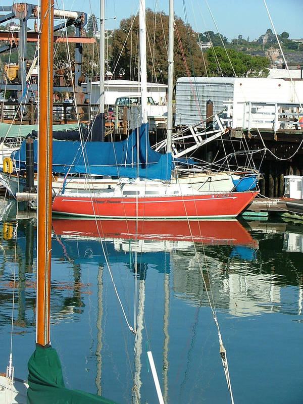 Seascape Art Print featuring the photograph The Boats Of Sausilito by Donna Thomas