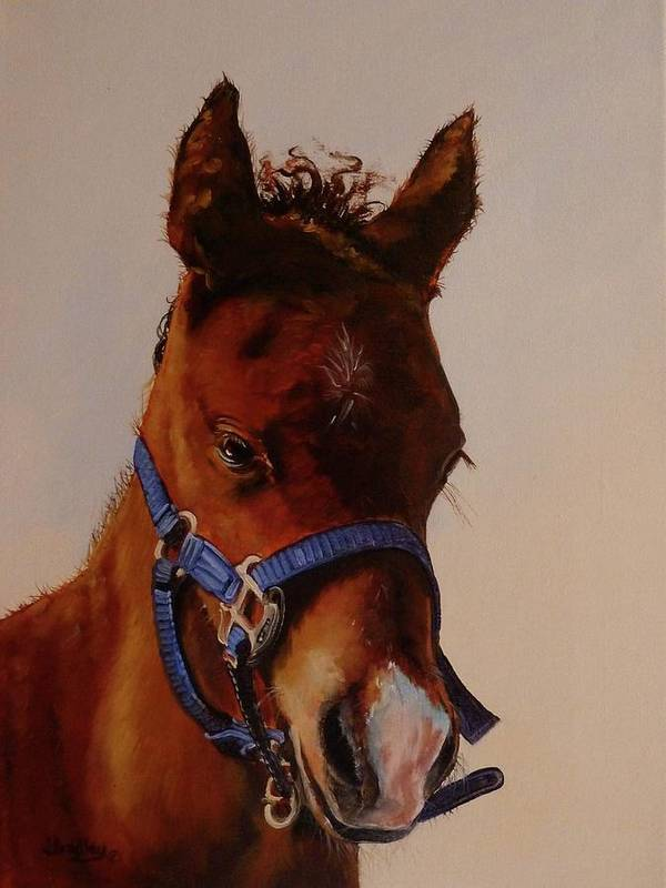 Judy Bradley Art Print featuring the painting The Halter by Judy Bradley