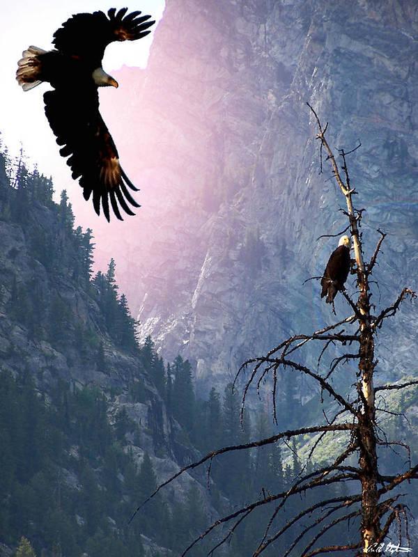 Eagles Art Print featuring the digital art Till Death Do Us Part by Bill Stephens