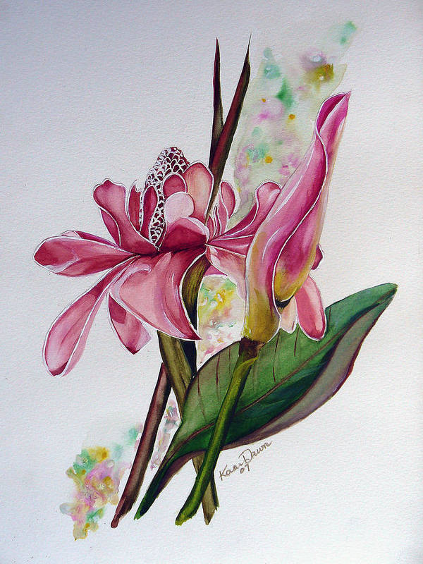 Flower Painting Floral Painting Botanical Painting Flowering Ginger. Art Print featuring the painting Torch Ginger Lily by Karin Dawn Kelshall- Best