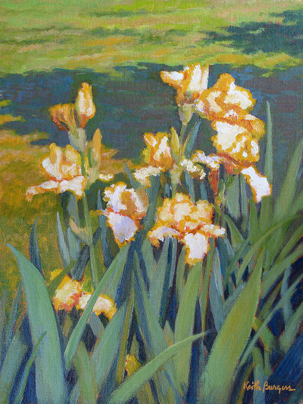 Impressionism Art Print featuring the painting Trimmed In Gold by Keith Burgess
