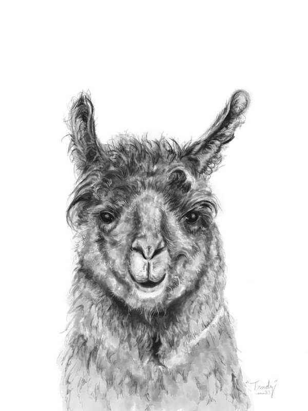 Llama Art Art Print featuring the drawing Trudy by K Llamas
