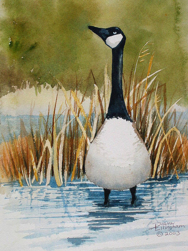 Goose Art Print featuring the painting Whas Up by Diane Ellingham