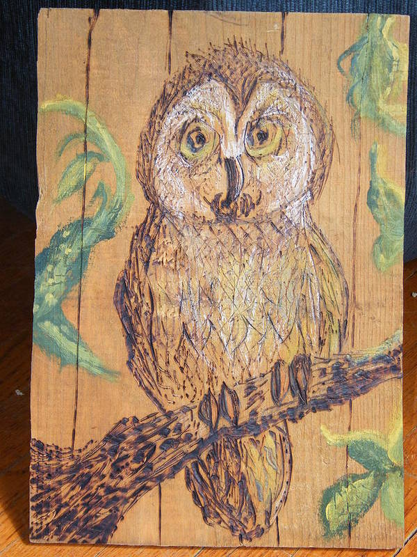 Owls Woodburns Nature Art Print featuring the pyrography Whooooo Me by Margaret G Calenda