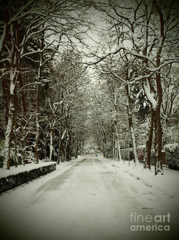 Photography Art Print featuring the pyrography Winter by Thomas Maes