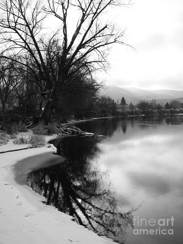 Black And White Art Print featuring the photograph Winter Tree Reflection - Black And White by Carol Groenen