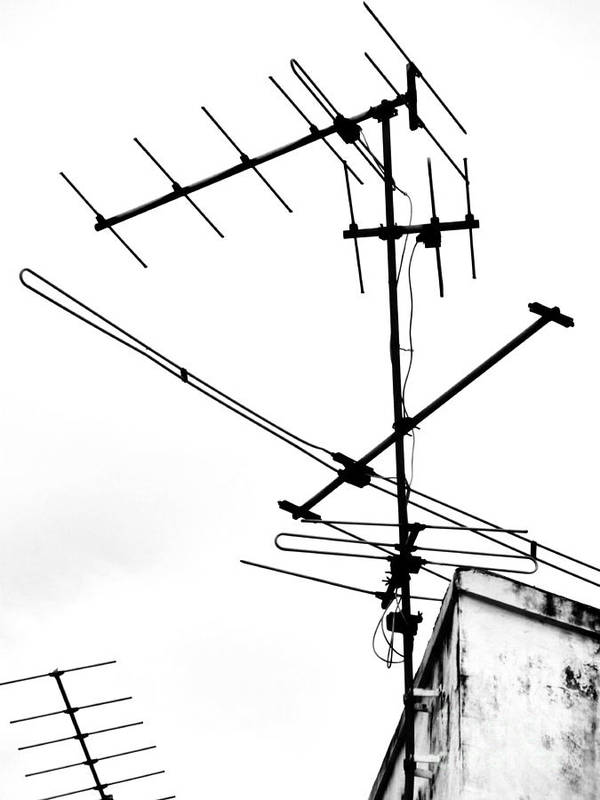 Wires Art Print featuring the photograph Wired by Tara Turner