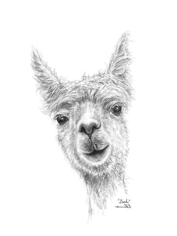 Llama Art Art Print featuring the drawing Zach by K Llamas
