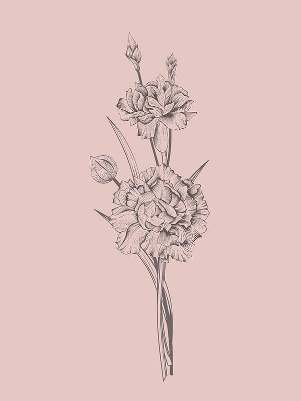 Carnation Art Print featuring the mixed media Carnation Blush Pink Flower by Naxart Studio