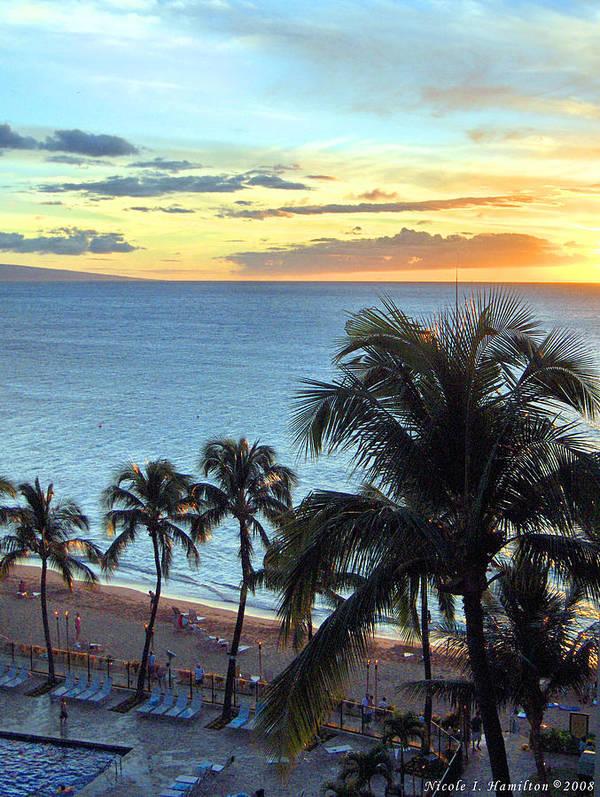 Palm Tree Art Print featuring the photograph Resort Sunset by Nicole I Hamilton