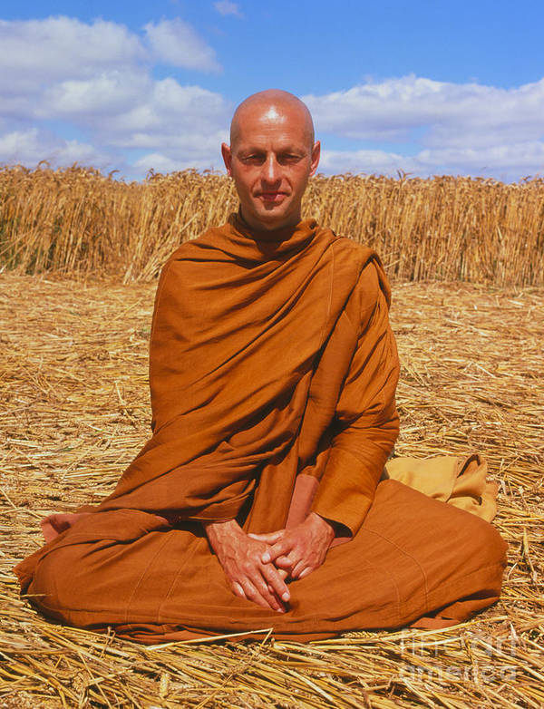 Crop Circle Print featuring the photograph Buddhist Monk Meditating by David Parker and SPL