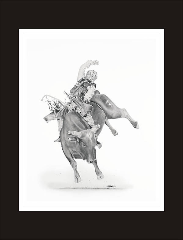 Bull Riding Art Print featuring the drawing Chris Shivers by Don Medina