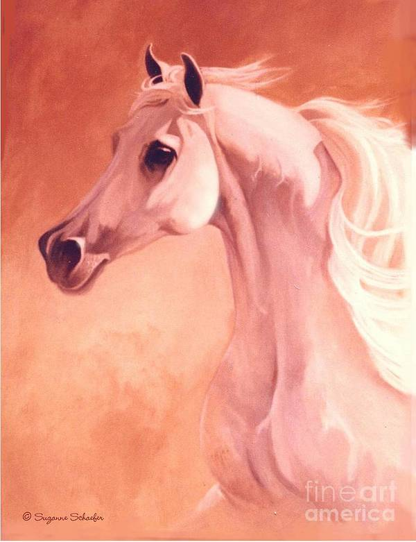 Horses Art Print featuring the painting Desert Prince Arabian Stallion by Suzanne Schaefer