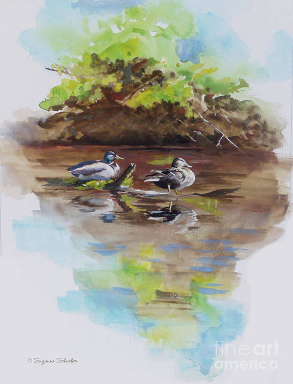 Mallard Ducks Art Print featuring the painting Everythings Just Ducky by Suzanne Schaefer