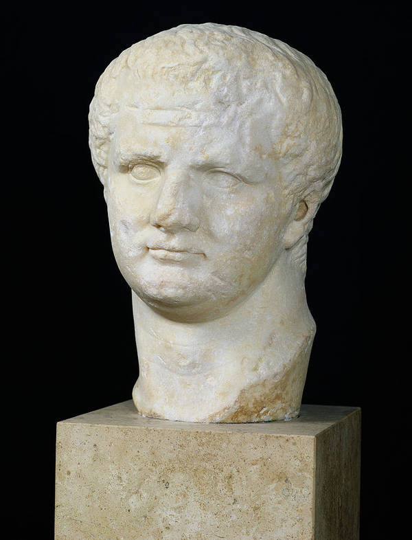 Tete De Art Print featuring the sculpture Head Of Titus by Anonymous