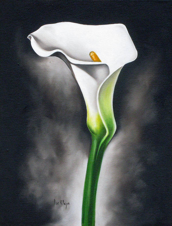Lilly Art Print featuring the painting Lily by Ilse Kleyn