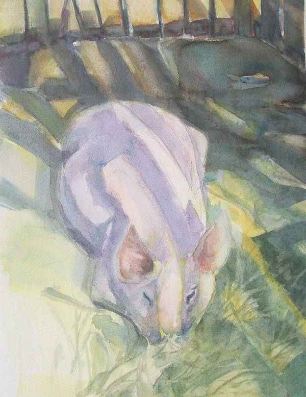 Farm Animals Art Print featuring the painting Ode To A Pig by Grace Keown